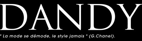 LOGO DANDY MAGAZINE